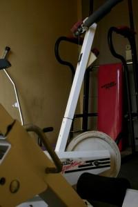 Ein Hoch auf den Fitnessgott